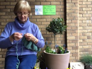 Woman knitting with a stitches for survival sign and a sign saying legal protection for the earth and oceans